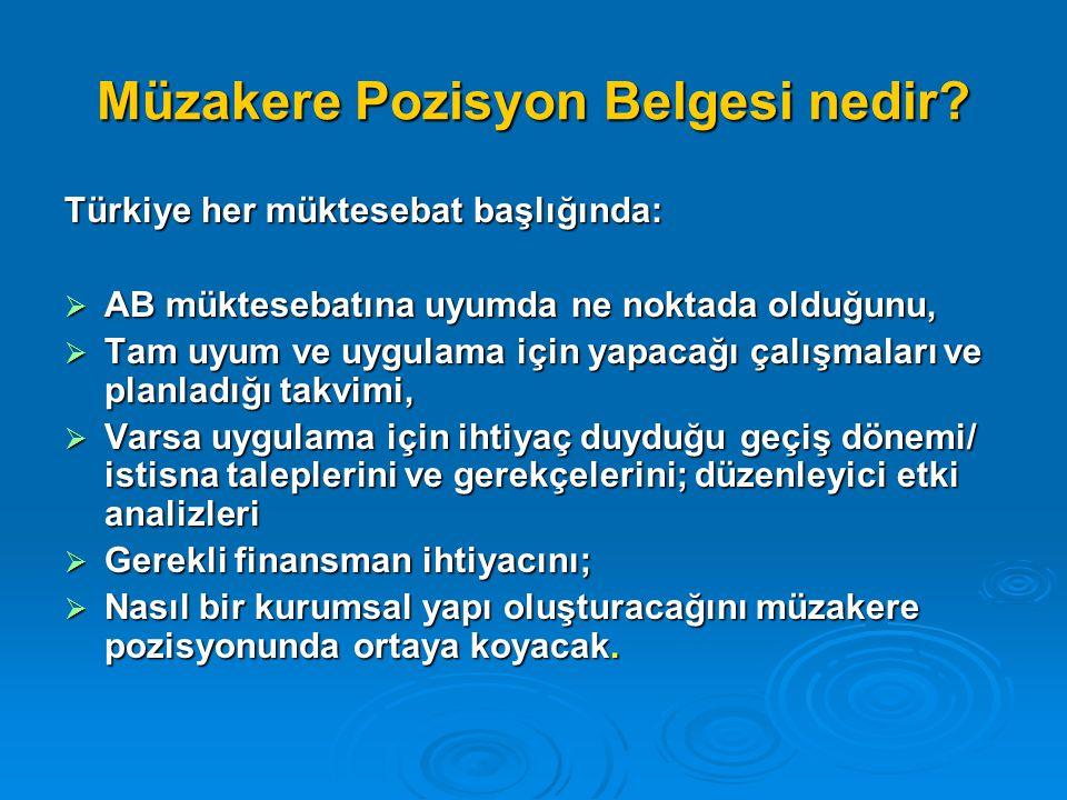 Pozisyon Belgelerinin Hazırlanması Türkiye'nin Pozisyon Belgesi Gerekli Düzenlemelerin Yapılması ve Onayı Türkiye'nin Taslak Pozisyon Belgesi Bakanlıklararası Komite Çalışma GruplarıMüzakere Heyeti
