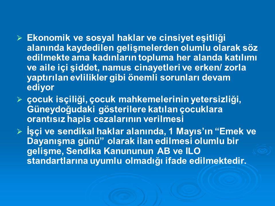   Kültürel haklar alanında TRT 6 gibi olumlu gelişmelerin yanında Türkçe dışındaki dillerin özel TV ve radyo yayınlarında, siyasi yasamda, eğitimde ve kamu kurumları ile temasta kullanılmasında kısıtlamalar olduğu eklenmektedir.