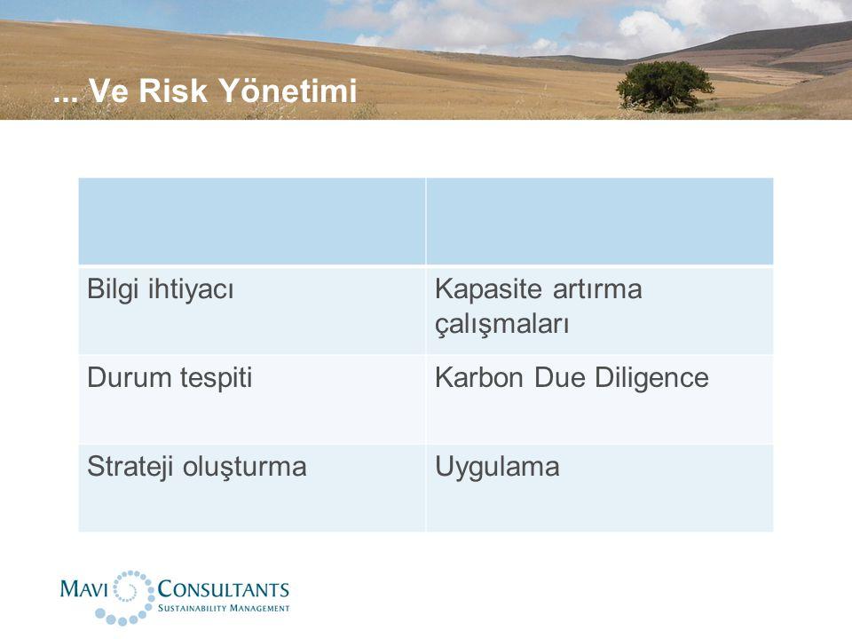 ... Ve Risk Yönetimi Bilgi ihtiyacıKapasite artırma çalışmaları Durum tespitiKarbon Due Diligence Strateji oluşturmaUygulama