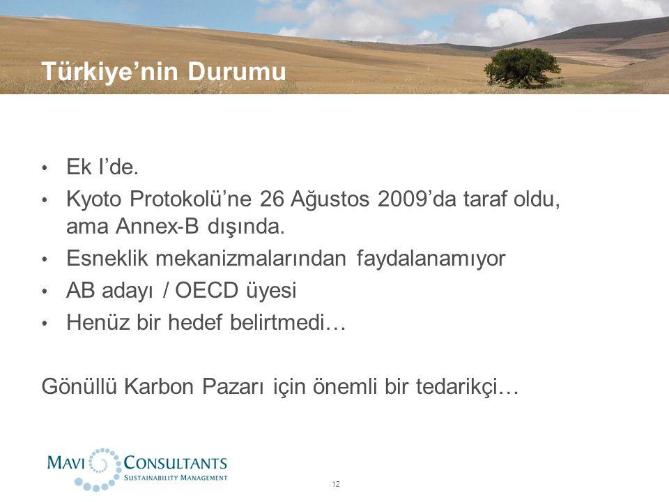 Türkiye'nin Durumu Ek I'de. Kyoto Protokolü'ne 26 Ağustos 2009'da taraf oldu, ama Annex ‐ B dışında. Esneklik mekanizmalarından faydalanamıyor AB aday