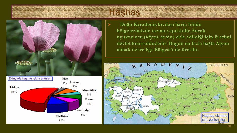  Do ğ u Karadeniz kıyıları hariç bütün bölgelerimizde tarımı yapılabilir.