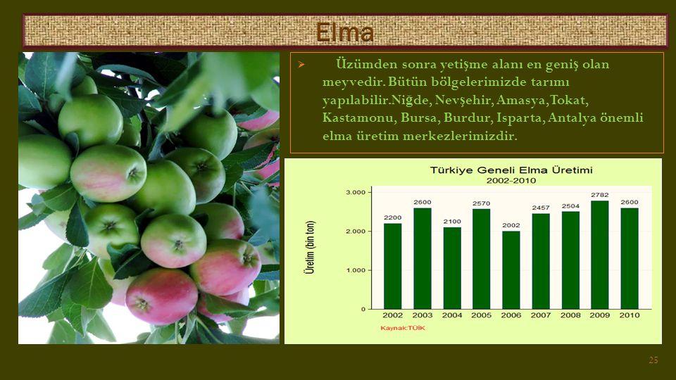  Üzümden sonra yeti ş me alanı en geni ş olan meyvedir.