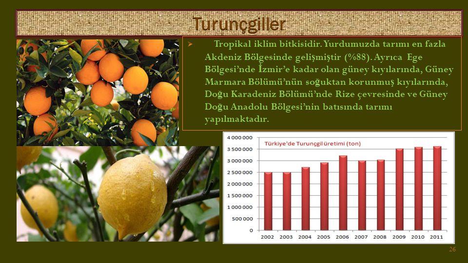  Tropikal iklim bitkisidir.Yurdumuzda tarımı en fazla Akdeniz Bölgesinde geli ş mi ş tir (%88).