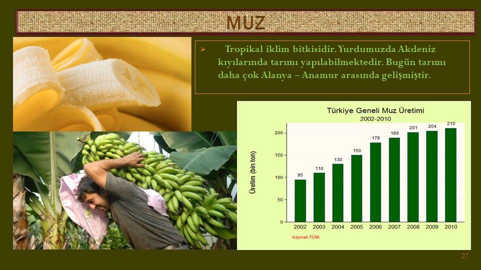  Tropikal iklim bitkisidir.Yurdumuzda Akdeniz kıyılarında tarımı yapılabilmektedir.