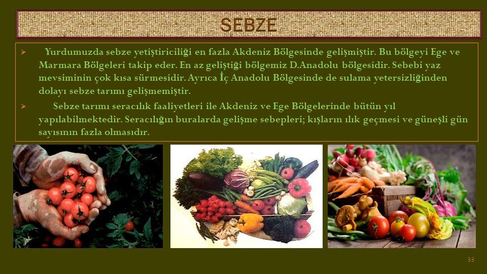  Yurdumuzda sebze yeti ş tiricili ğ i en fazla Akdeniz Bölgesinde geli ş mi ş tir.