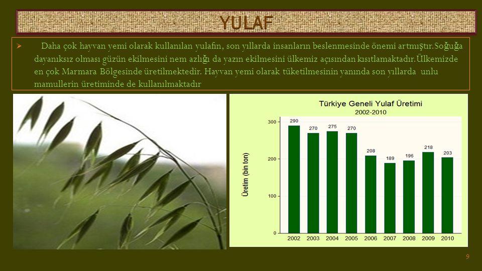  Daha çok hayvan yemi olarak kullanılan yulafın, son yıllarda insanların beslenmesinde önemi artmı ş tır.So ğ u ğ a dayanıksız olması güzün ekilmesini nem azlı ğ ı da yazın ekilmesini ülkemiz açısından kısıtlamaktadır.Ülkemizde en çok Marmara Bölgesinde üretilmektedir.