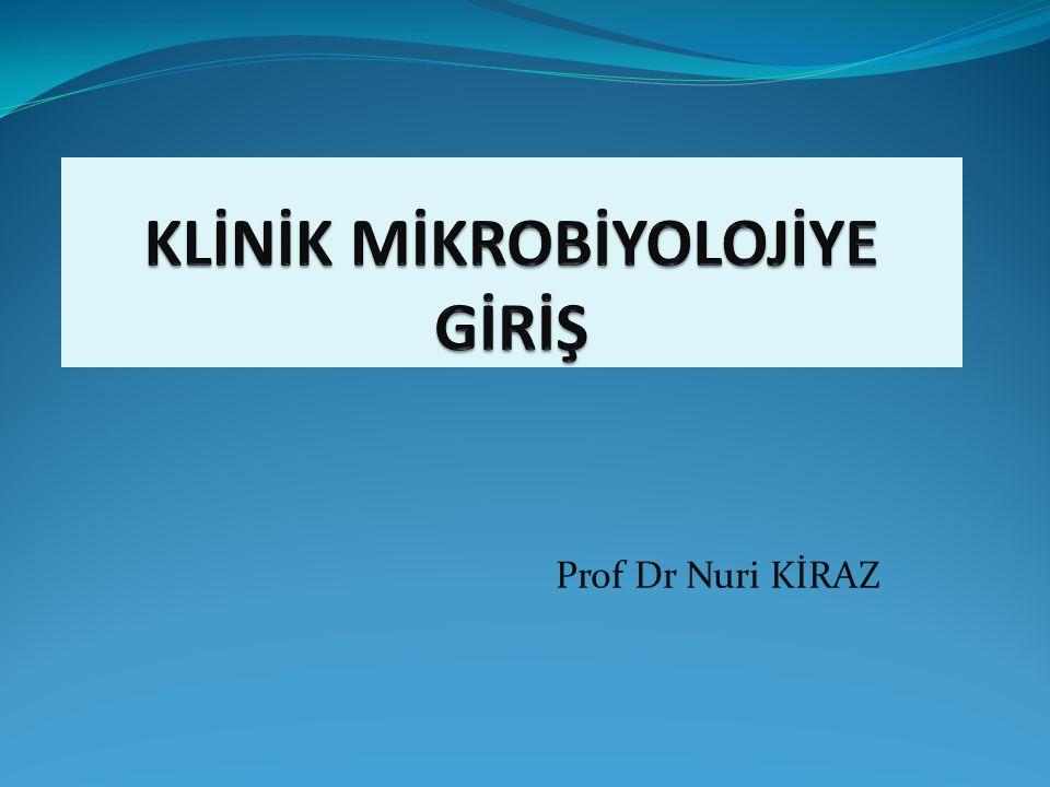 Prof Dr Nuri KİRAZ