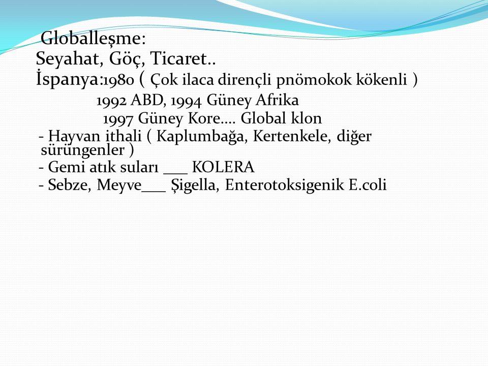 Globalleşme: Seyahat, Göç, Ticaret..