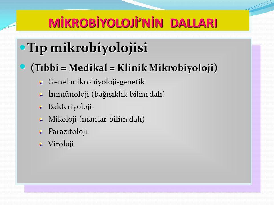 MİKROBİYOLOJİ'NİN DALLARI Tıp mikrobiyolojisi Tıp mikrobiyolojisi (Tıbbi = Medikal = Klinik Mikrobiyoloji) (Tıbbi = Medikal = Klinik Mikrobiyoloji) Genel mikrobiyoloji-genetik İmmünoloji (bağışıklık bilim dalı) Bakteriyoloji Mikoloji (mantar bilim dalı) Parazitoloji Viroloji Tıp mikrobiyolojisi Tıp mikrobiyolojisi (Tıbbi = Medikal = Klinik Mikrobiyoloji) (Tıbbi = Medikal = Klinik Mikrobiyoloji) Genel mikrobiyoloji-genetik İmmünoloji (bağışıklık bilim dalı) Bakteriyoloji Mikoloji (mantar bilim dalı) Parazitoloji Viroloji