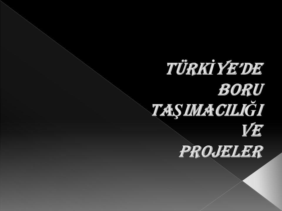  Boru hattı taşımacılığı nedir. Türkiye'deki boru hatları nelerdir.