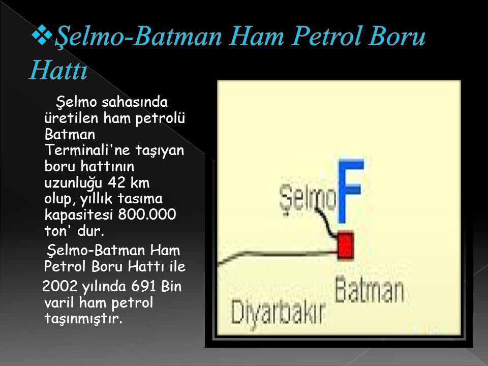 Şelmo sahasında üretilen ham petrolü Batman Terminali ne taşıyan boru hattının uzunluğu 42 km olup, yıllık tasıma kapasitesi 800.000 ton dur.