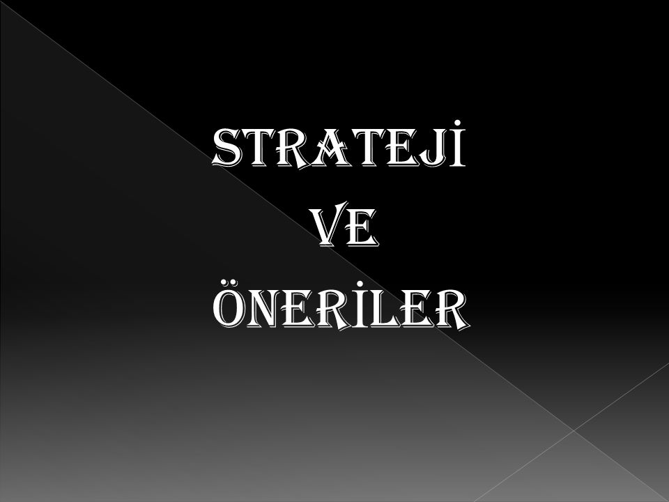 STRATEJ İ VE ÖNER İ LER