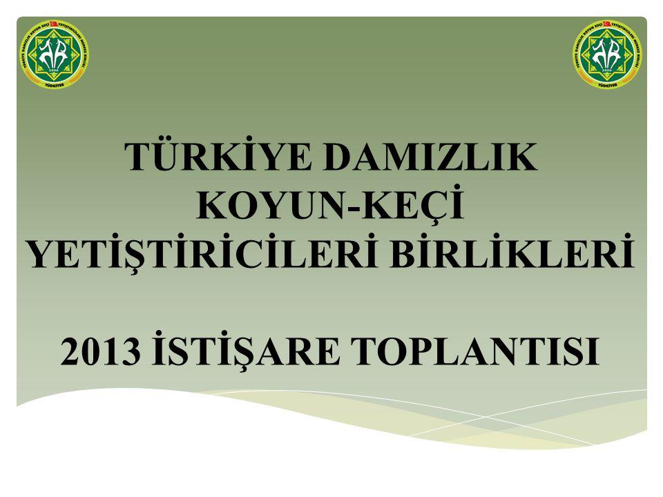 SABRINIZ İÇİN TEŞEKKÜRLER www.turkiyekoyunkeci.org