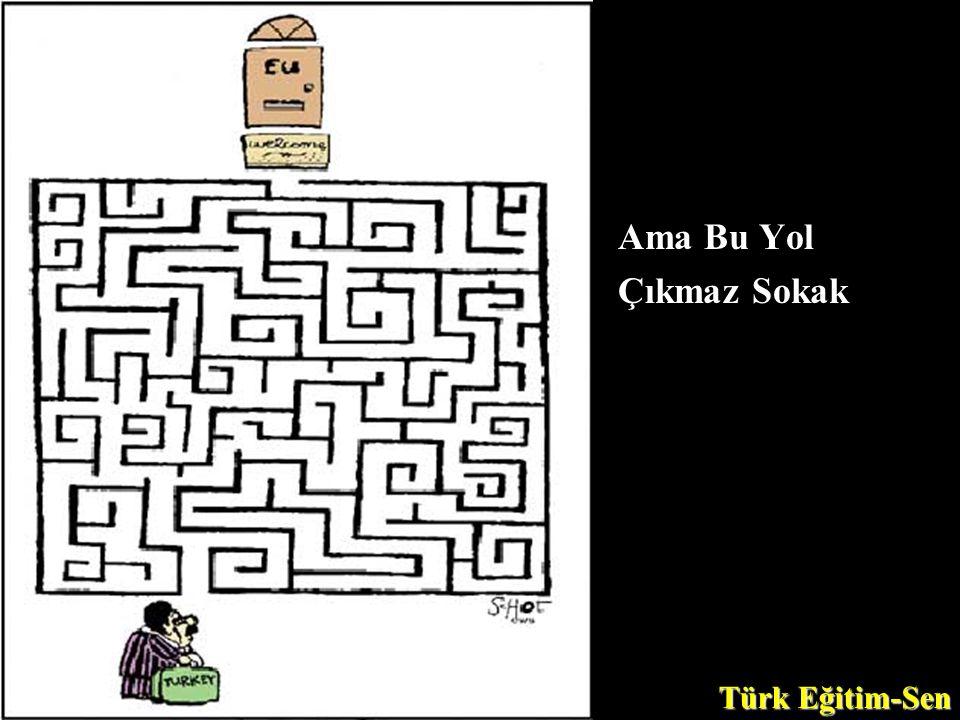 Ama Bu Yol Çıkmaz Sokak Türk Eğitim-Sen