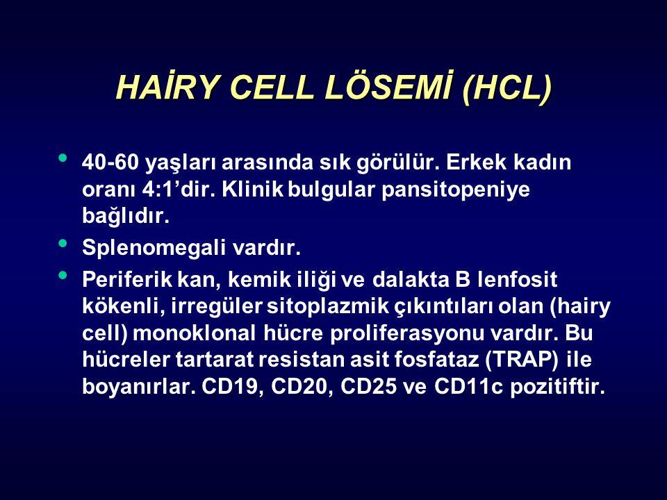 HAİRY CELL LÖSEMİ (HCL) 40-60 yaşları arasında sık görülür.