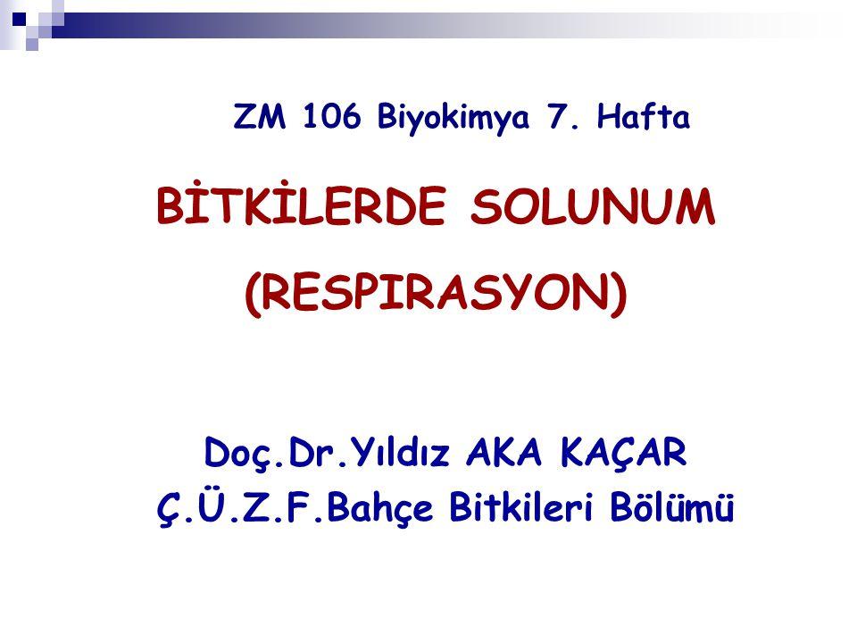 ZM 106 Biyokimya 7. Hafta Doç.Dr.Yıldız AKA KAÇAR Ç.Ü.Z.F.Bahçe Bitkileri Bölümü BİTKİLERDE SOLUNUM (RESPIRASYON)