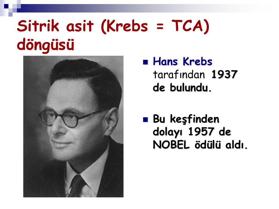 Sitrik asit (Krebs = TCA) döngüsü Hans Krebs 1937 de bulundu. Hans Krebs tarafından 1937 de bulundu. Bu keşfinden dolayı 1957 de NOBEL ödülü aldı. Bu