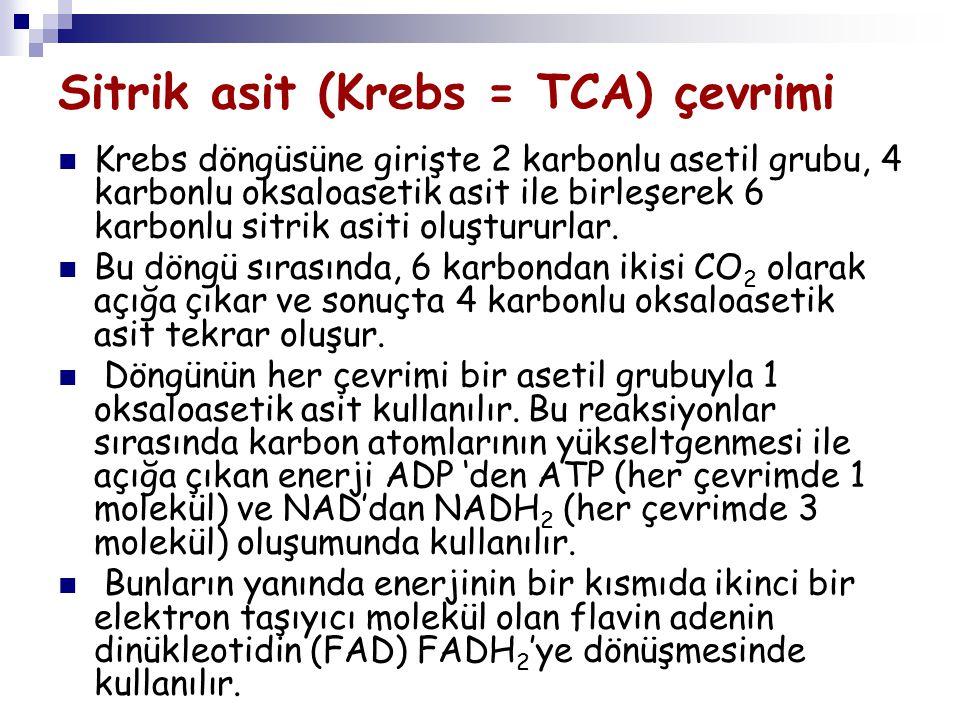 Sitrik asit (Krebs = TCA) çevrimi Krebs döngüsüne girişte 2 karbonlu asetil grubu, 4 karbonlu oksaloasetik asit ile birleşerek 6 karbonlu sitrik asiti