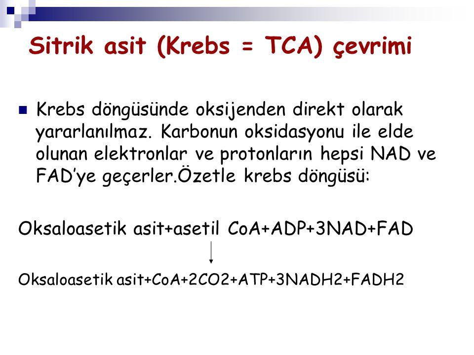 Sitrik asit (Krebs = TCA) çevrimi Krebs döngüsünde oksijenden direkt olarak yararlanılmaz. Karbonun oksidasyonu ile elde olunan elektronlar ve protonl