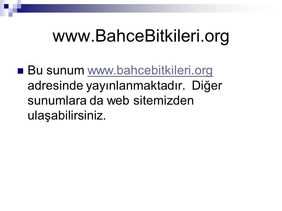 www.BahceBitkileri.org Bu sunum www.bahcebitkileri.org adresinde yayınlanmaktadır. Diğer sunumlara da web sitemizden ulaşabilirsiniz.www.bahcebitkiler