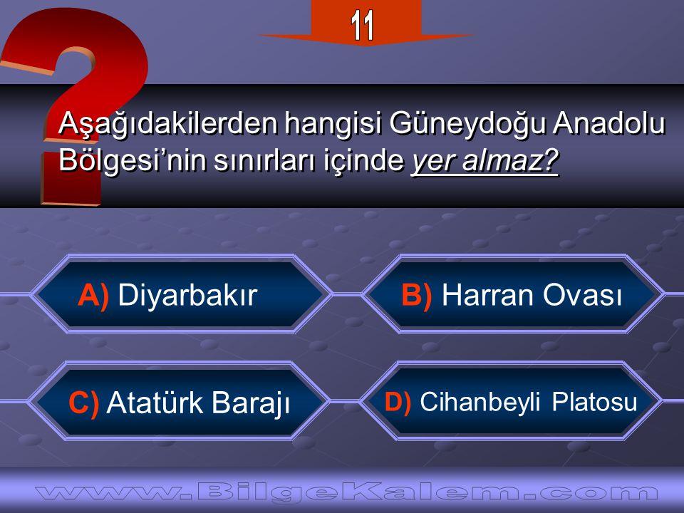 Aşağıdakilerden hangisi Güneydoğu Anadolu Bölgesi'nin sınırları içinde yer almaz.