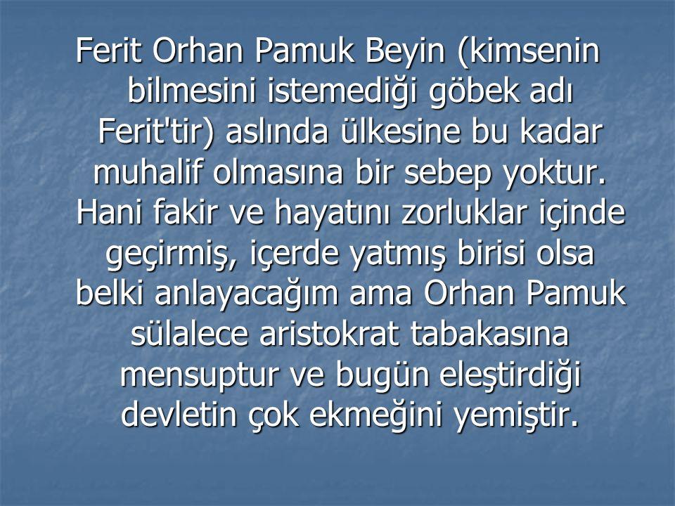 Ferit Orhan Pamuk Beyin (kimsenin bilmesini istemediği göbek adı Ferit'tir) aslında ülkesine bu kadar muhalif olmasına bir sebep yoktur. Hani fakir ve