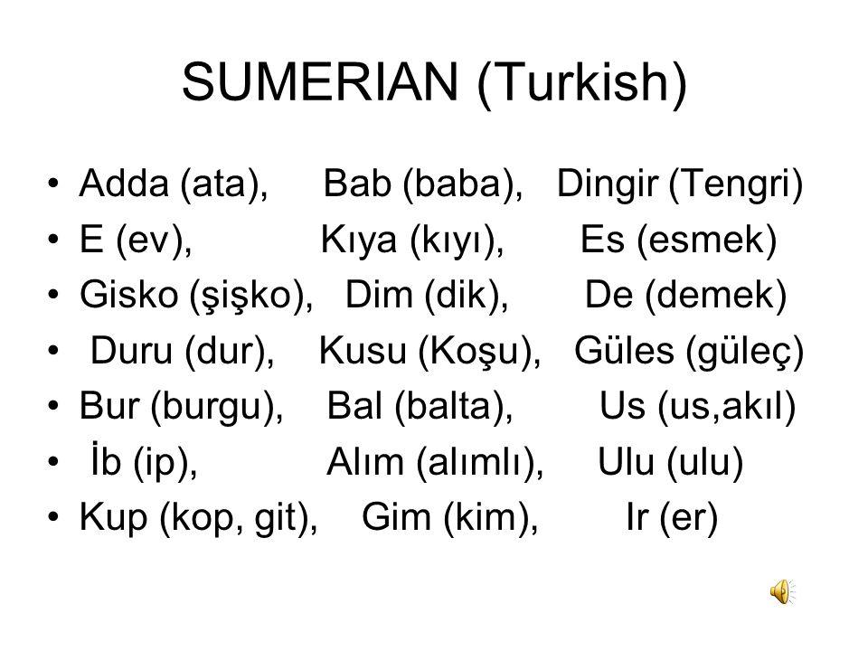 SUMERIAN (Turkish) Adda (ata), Bab (baba), Dingir (Tengri) E (ev), Kıya (kıyı), Es (esmek) Gisko (şişko), Dim (dik), De (demek) Duru (dur), Kusu (Koşu), Güles (güleç) Bur (burgu), Bal (balta), Us (us,akıl) İb (ip), Alım (alımlı), Ulu (ulu) Kup (kop, git), Gim (kim), Ir (er)