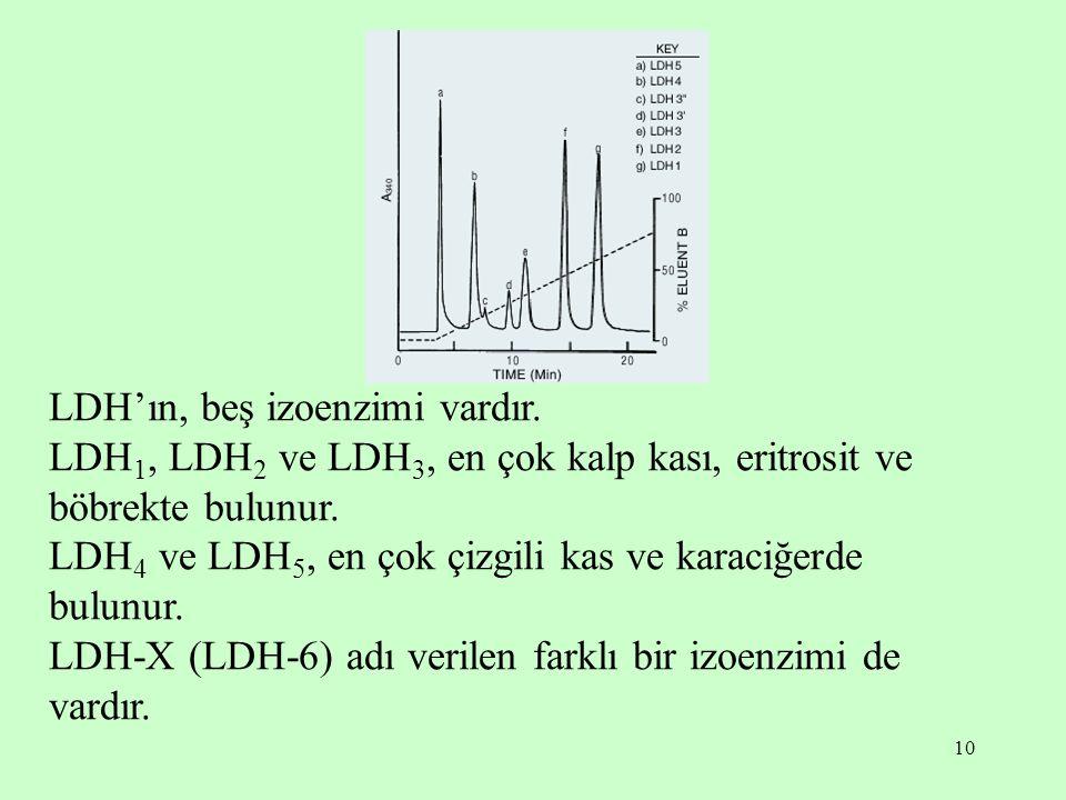 10 LDH'ın, beş izoenzimi vardır. LDH 1, LDH 2 ve LDH 3, en çok kalp kası, eritrosit ve böbrekte bulunur. LDH 4 ve LDH 5, en çok çizgili kas ve karaciğ