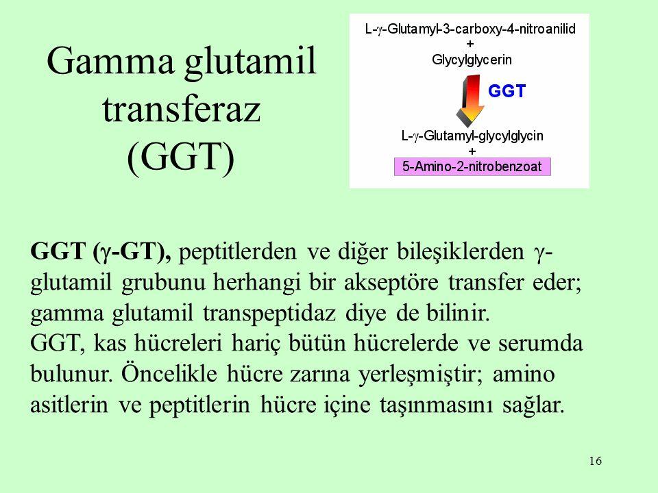 16 Gamma glutamil transferaz (GGT) GGT (  -GT), peptitlerden ve diğer bileşiklerden  - glutamil grubunu herhangi bir akseptöre transfer eder; gamma glutamil transpeptidaz diye de bilinir.