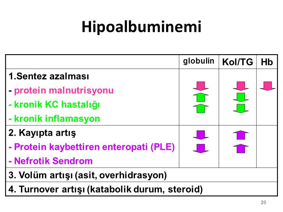 Hipoalbuminemi globulin Kol/TGHb 1.Sentez azalması - protein malnutrisyonu - kronik KC hastalığı - kronik inflamasyon 2. Kayıpta artış - Protein kaybe