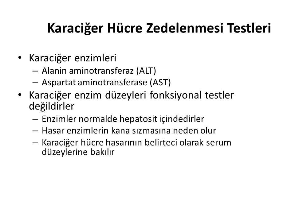 Karaciğer Hücre Zedelenmesi Testleri Karaciğer enzimleri – Alanin aminotransferaz (ALT) – Aspartat aminotransferase (AST) Karaciğer enzim düzeyleri fo