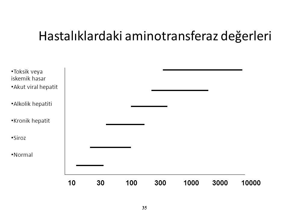 35 Hastalıklardaki aminotransferaz değerleri Toksik veya iskemik hasar Akut viral hepatit Alkolik hepatiti Kronik hepatit Siroz Normal 103010030010003