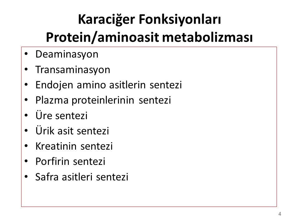 4 Karaciğer Fonksiyonları Protein/aminoasit metabolizması Deaminasyon Transaminasyon Endojen amino asitlerin sentezi Plazma proteinlerinin sentezi Üre