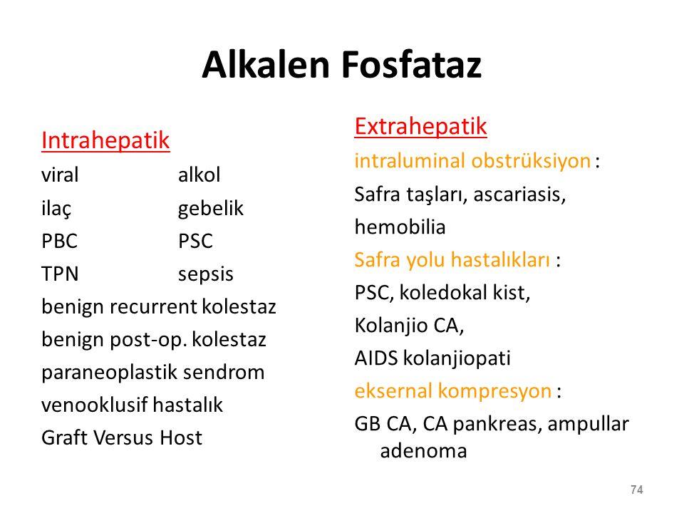 Alkalen Fosfataz Intrahepatik viral alkol ilaçgebelik PBCPSC TPNsepsis benign recurrent kolestaz benign post-op. kolestaz paraneoplastik sendrom venoo
