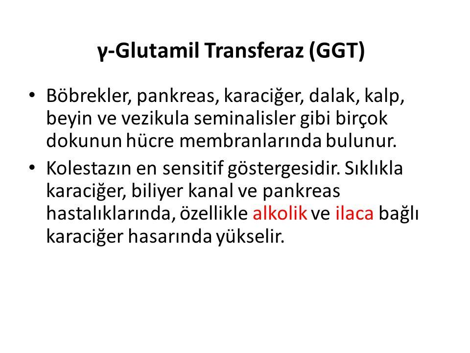γ-Glutamil Transferaz (GGT) Böbrekler, pankreas, karaciğer, dalak, kalp, beyin ve vezikula seminalisler gibi birçok dokunun hücre membranlarında bulun