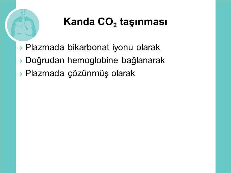 Kanda CO 2 taşınması  Plazmada bikarbonat iyonu olarak  Doğrudan hemoglobine bağlanarak  Plazmada çözünmüş olarak