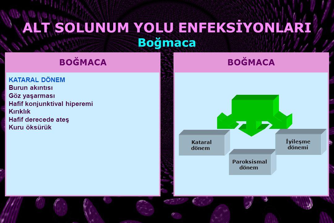 BOĞMACA İnsan B. pertussis'in bilinen tek konağı. Bulaşma, enfekte bireylerin solunum sistemi salgılarının damlacık yoluyla yayılması sonucu oluşur. H