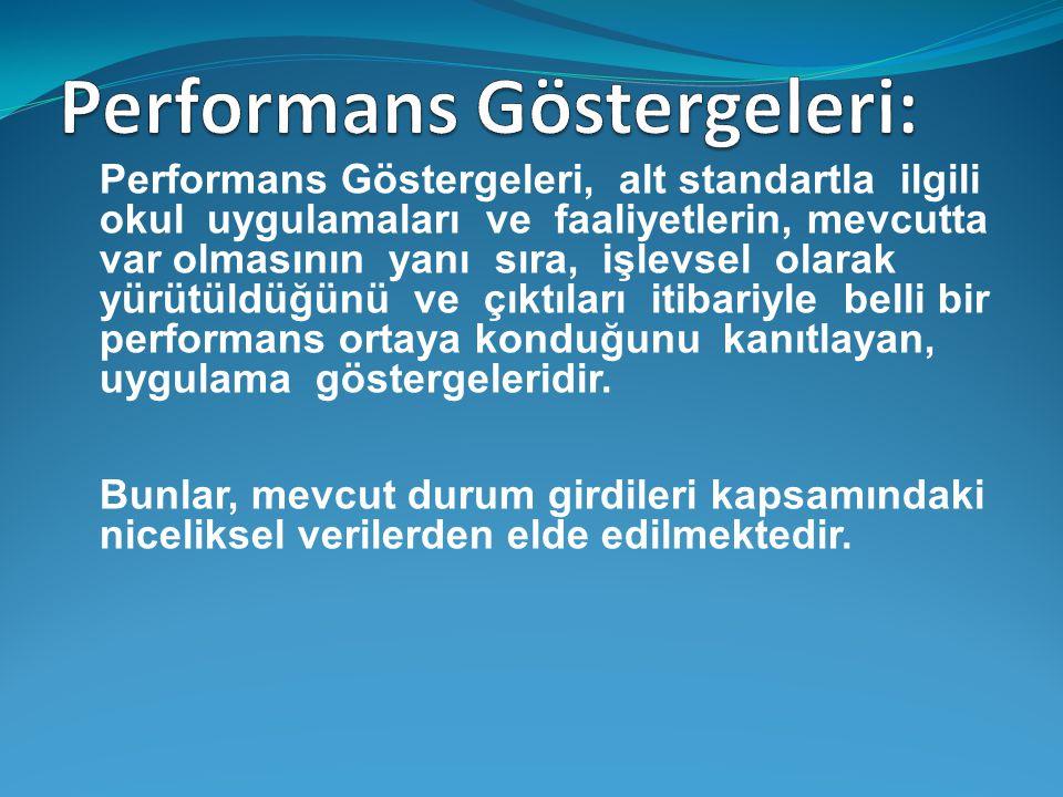 Performans Göstergeleri, alt standartla ilgili okul uygulamaları ve faaliyetlerin, mevcutta var olmasının yanı sıra, işlevsel olarak yürütüldüğünü ve çıktıları itibariyle belli bir performans ortaya konduğunu kanıtlayan, uygulama göstergeleridir.