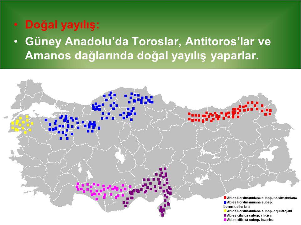 Doğal yayılış: Güney Anadolu'da Toroslar, Antitoros'lar ve Amanos dağlarında doğal yayılış yaparlar.