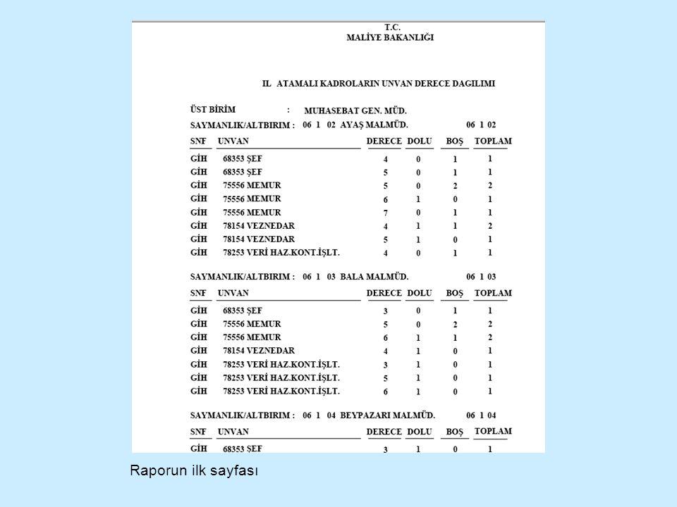 Raporun ilk sayfası