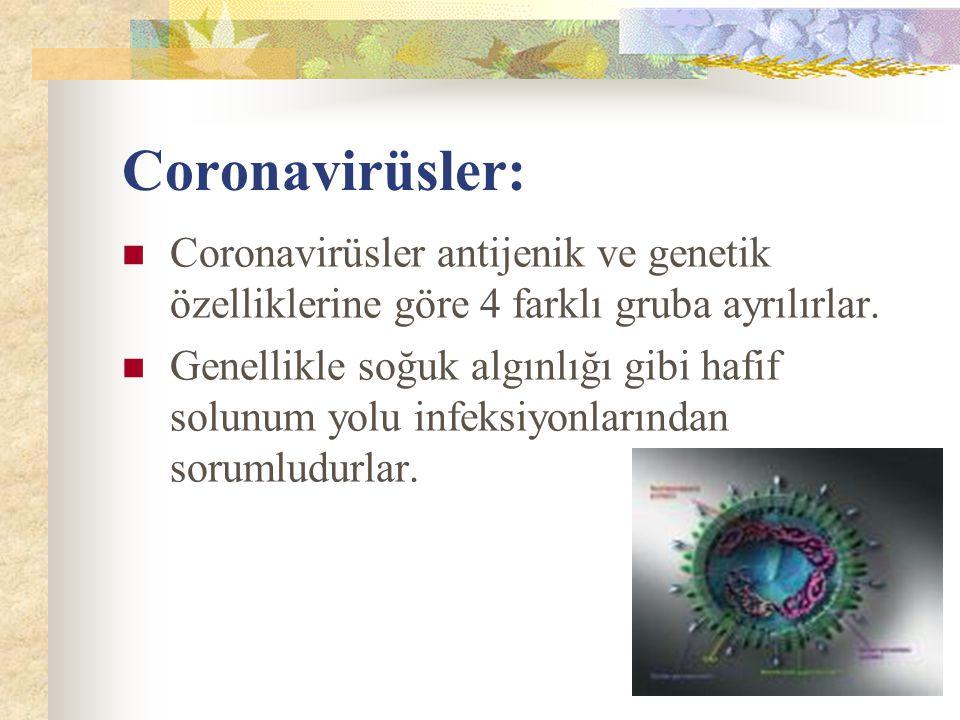 Coronavirüsler: Coronavirüsler antijenik ve genetik özelliklerine göre 4 farklı gruba ayrılırlar.