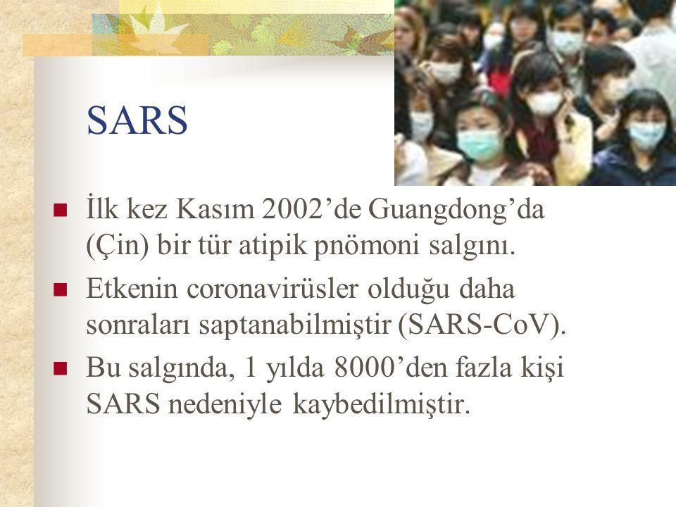 SARS İlk kez Kasım 2002'de Guangdong'da (Çin) bir tür atipik pnömoni salgını.
