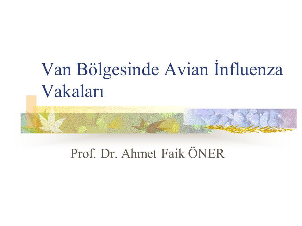 Van Bölgesinde Avian İnfluenza Vakaları Prof. Dr. Ahmet Faik ÖNER