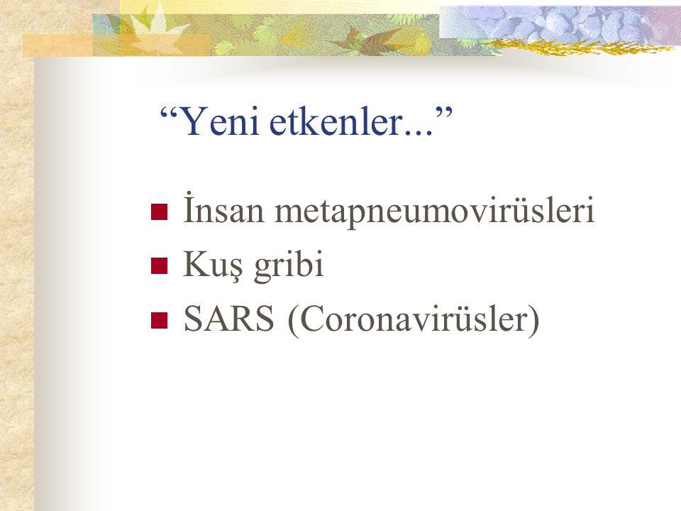 Yeni etkenler... İnsan metapneumovirüsleri Kuş gribi SARS (Coronavirüsler)