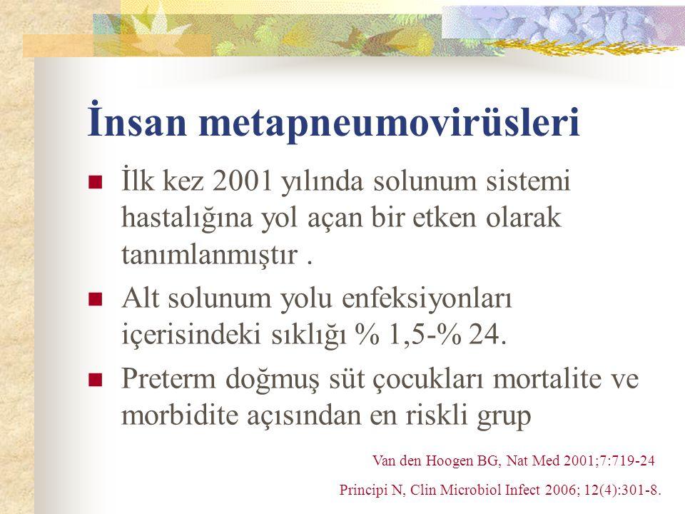 İnsan metapneumovirüsleri İlk kez 2001 yılında solunum sistemi hastalığına yol açan bir etken olarak tanımlanmıştır.