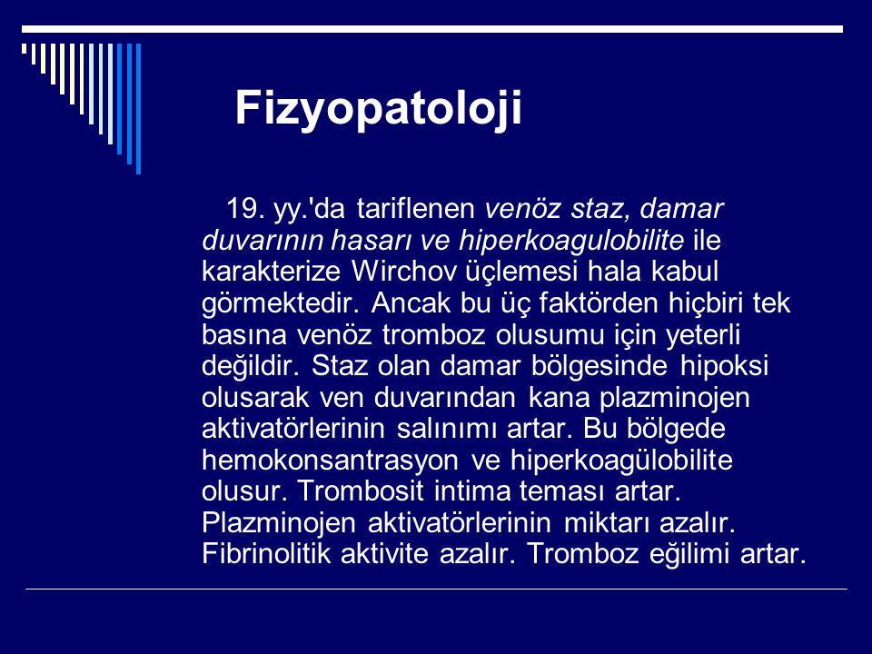 Fizyopatoloji 19.