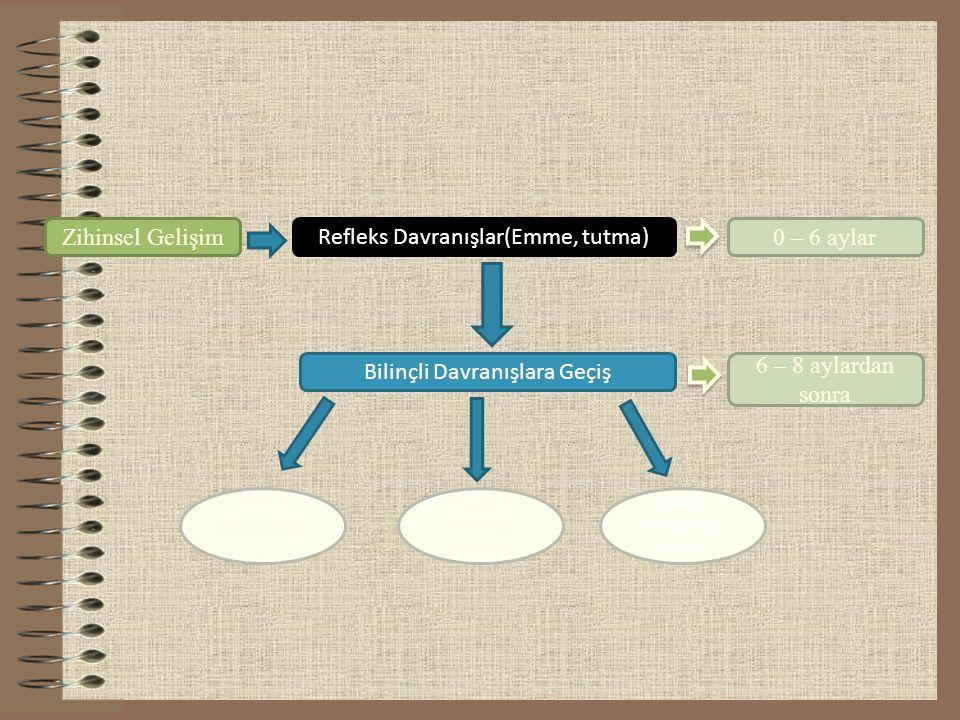 Zihinsel Gelişim Refleks Davranışlar(Emme, tutma) Bilinçli Davranışlara Geçiş 0 – 6 aylar 6 – 8 aylardan sonra Nesne Devamlılığ ı Döngüsel/ Devresel T