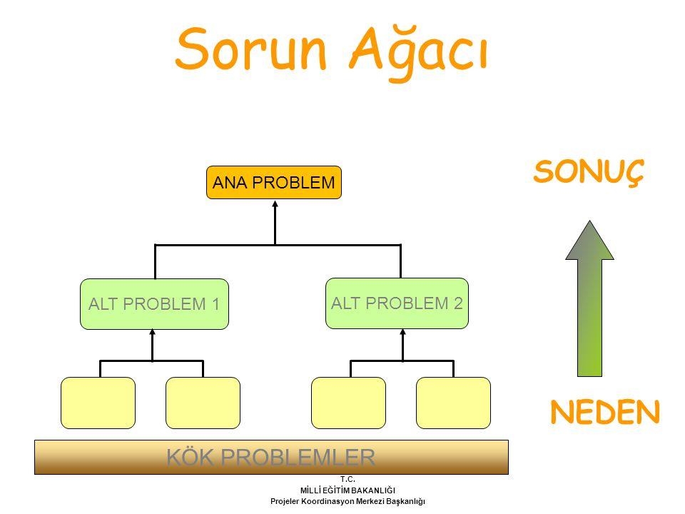 Sorun Ağacı ANA PROBLEM ALT PROBLEM 1 NEDEN SONUÇ ALT PROBLEM 2 KÖK PROBLEMLER T.C.