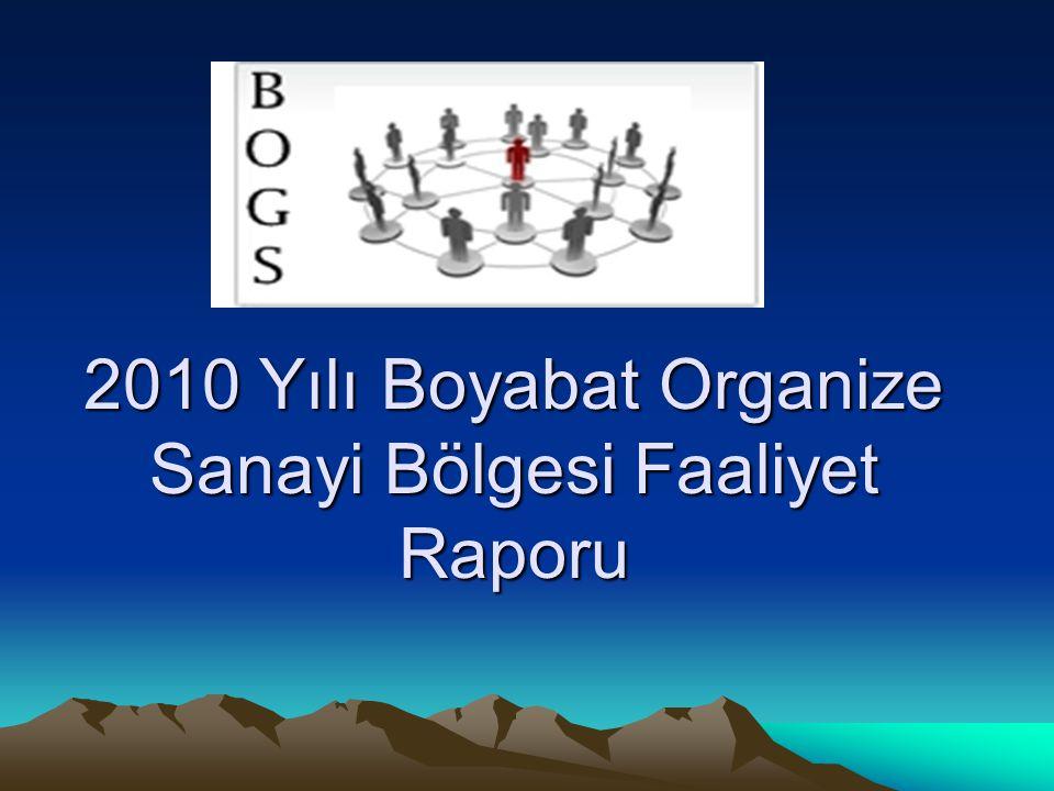 2010 Yılı Boyabat Organize Sanayi Bölgesi Faaliyet Raporu