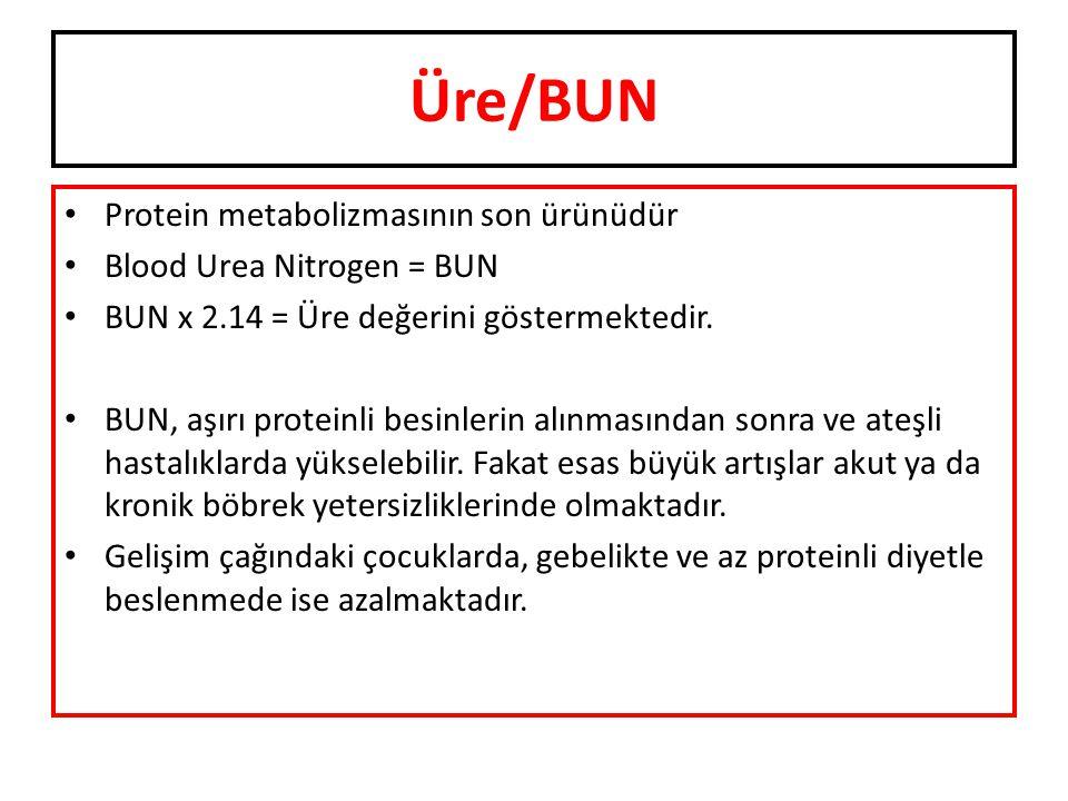 Üre/BUN Protein metabolizmasının son ürünüdür Blood Urea Nitrogen = BUN BUN x 2.14 = Üre değerini göstermektedir. BUN, aşırı proteinli besinlerin alın
